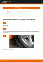 Recomendações do mecânico de automóveis sobre a substituição de PEUGEOT Peugeot 206 cc 2d 2.0 S16 Correia Trapezoidal Estriada