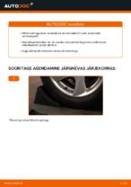 Amort vahetus: pdf juhend PEUGEOT 206