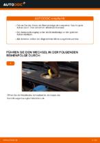 FORD Trommelbremsbacken hinten und vorne wechseln - Online-Handbuch PDF