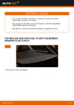 Wie der Austausch von Gasfedern des Kofferraumdeckels bei AUDI A4 B6 (8E5)-Autos funktioniert