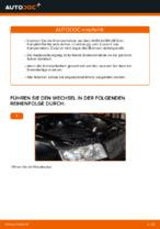 Wie der Austausch der hinteren Bremsscheiben bei einem AUDI A4 B6 (8E5) funktioniert