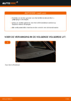 Hoe u gasveren voor het kofferbakdeksel van een AUDI A4 B6 (8E5) kunt vervangen