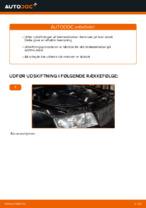 Hvordan man udskifter bremseklodser til skivebremer i bag på AUDI A4 B6 (8E5)