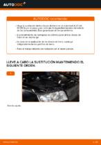 Cómo sustituir los discos de freno traseros en un AUDI A4 B6 (8E5)