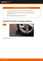 bilreservdelar PEUGEOT 207 | PDF Manual för reparation