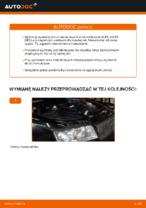 W jaki sposób wymienić tylne tarcze hamulcowe w AUDI A4 B6 (8E5)