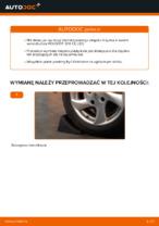 Wymiana Łożysko zestaw naprawczy piasty: pdf instrukcje do PEUGEOT 206
