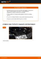 Ako vymeniť zadné brzdové kotúče na AUDI A4 B6 (8E5)