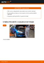 Příručka pro odstraňování problémů PEUGEOT 206