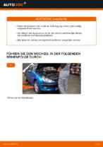 Auswechseln von Fahrwerksfedern Anleitung PDF für PEUGEOT 206