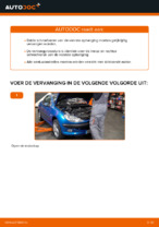 Wanneer Schroefveren PEUGEOT 206 CC (2D) vervangen: pdf handleiding
