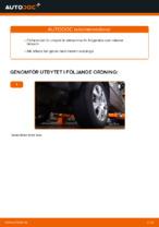 Lär dig hur du fixar Länkarm vänster och höger BMW problemen