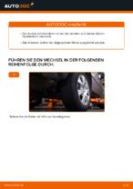 Tipps von Automechanikern zum Wechsel von BMW BMW E53 3.0 i Spurstangenkopf