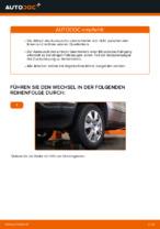 Hilfreiche Fahrzeug-Reparaturanweisung für oben vorne/hinten Spurlenker BMW