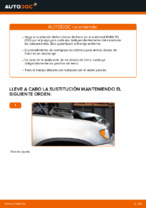 BREMBO 09.9793.1X para X5 (E53) | PDF guía de reemplazo