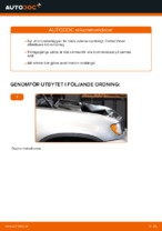 Bilmekanikers rekommendationer om att byta BMW BMW E53 3.0 i Bromsskivor