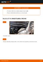Când trebuie sa schimbi Bujii iridium MERCEDES-BENZ A-CLASS (W168): pdf manual