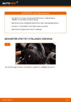 BMW 3 Coupe (E46) reparations- och underhåll handledning