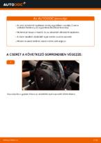 Műhely kézikönyv: BMW E91