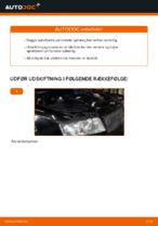 Hvordan man udskifter ophængsfjedre i for på AUDI A4 B6 (8E5)