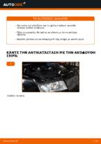Εγχειριδιο AUDI pdf