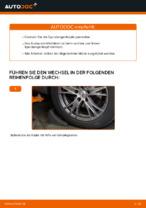 AUDI A4 Avant (8E5, B6) Dritte Bremsleuchte: Online-Handbuch zum Selbstwechsel