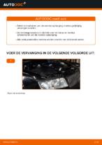 Online gratis instructies het Schroefveren vervangen AUDI A4 Avant (8E5, B6)