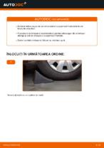 Recomandările mecanicului auto cu privire la înlocuirea TOYOTA Toyota Rav4 II 2.0 4WD (ACA21, ACA20) Placute Frana