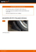 RIDEX 3229S0219 för CITROËN, PEUGEOT | PDF instruktioner för utbyte