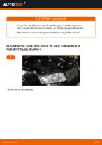 Wie Sie den Motorluftfilter am AUDI A4 B6 (8E5) ersetzen