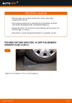 Empfehlungen des Automechanikers zum Wechsel von TOYOTA Toyota Rav4 II 2.0 4WD (ACA21, ACA20) Bremsscheiben