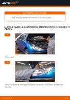 Tutorial de reparación y mantenimiento de Peugeot 206 Berlina