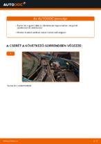 Műhely kézikönyv: Renault Kangoo 2 Express