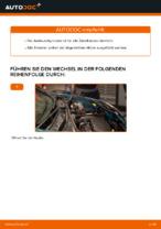 Wie Zündkerzensatz auswechseln und einstellen: kostenloser PDF-Anleitung