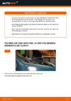 Hilfreiche Fahrzeug-Reparaturanweisung für beschichtet Bremsscheibe RENAULT