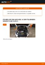 PEUGEOT 308 Handbuch zur Fehlerbehebung