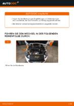 Hilfreiche Fahrzeug-Reparaturanweisung für Ersatz Motorluftfilter PEUGEOT