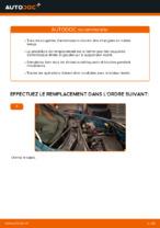 Remplacement Semelle amortisseur RENAULT KANGOO : instructions pdf