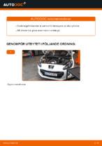 Gratis instruktioner online hur installerar man Tändkassett PEUGEOT 308 (4A_, 4C_)
