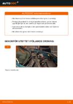 Gratis instruktioner online hur installerar man Fjäderbens stödlager RENAULT KANGOO (KC0/1_)