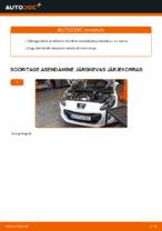 Süütepool vahetus: pdf juhend PEUGEOT 308