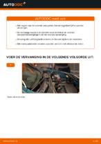 Handleiding voor reparatie en onderhoud van Draagarmen & Ophanging