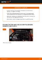 Wie Sie den Innenraumfilter am AUDI A3 8L1 ersetzen