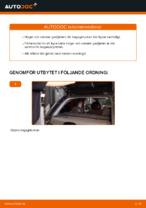 Hur man byter ut gasfjädern för bagageluckan på OPEL CORSA C (F08, F68)