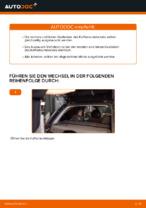 Wie der Austausch von Gasfedern des Kofferraumdeckels bei OPEL CORSA C (F08, F68)-Autos funktioniert