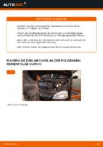 Opel Corsa S93 Reparaturanweisung Schritt-für-Schritt