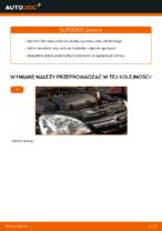 Odkryj nasz szczegółowy samouczek na temat rozwiązywania problemów z Filtr oleju silnikowego OPEL