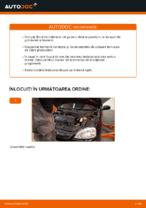 Recomandările mecanicului auto cu privire la înlocuirea OPEL Opel Corsa C 1.0 (F08, F68) Arc spirala