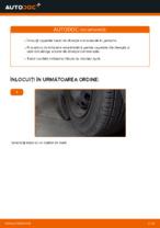Cum se înlocuiesc și se ajustează Cap de bara : ghid pdf gratuit