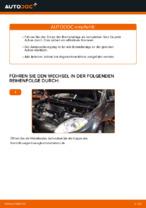 Auswechseln Scheibenbremsbeläge FIAT BRAVA: PDF kostenlos